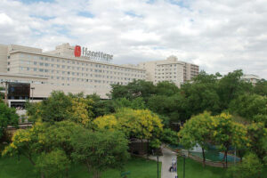 جامعة حجة تبة