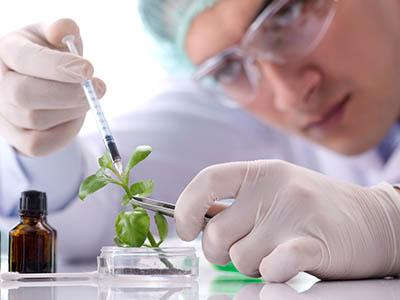 الهندسة الحيوية