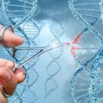 هندسة علم الجزئيات والوراثة
