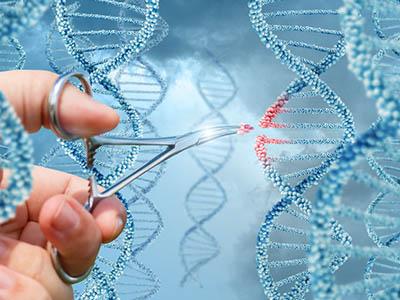 هندسة علم الجزيئات والوراثة